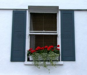 window with blue shutters and flower box